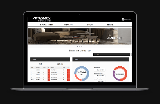 Aplicación Web para Vitromex